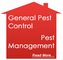 house-pest-managment