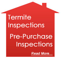 house-termite-inspections