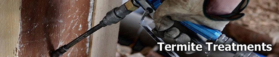 Termite Treatments Brisbane